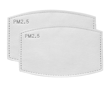 ACTIVATED CARBON PM2.5 FILTER PAPER INSERT REPLACEMENT